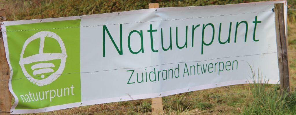 Groen neerland (2)